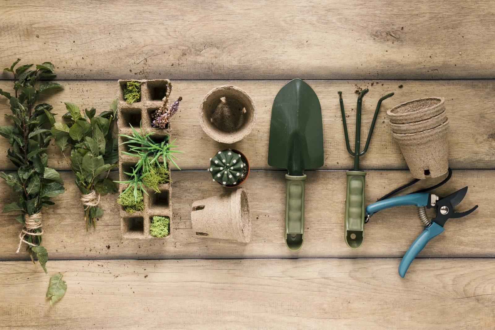 Variety of gardening tools