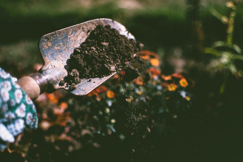 Garden-Soil-Type